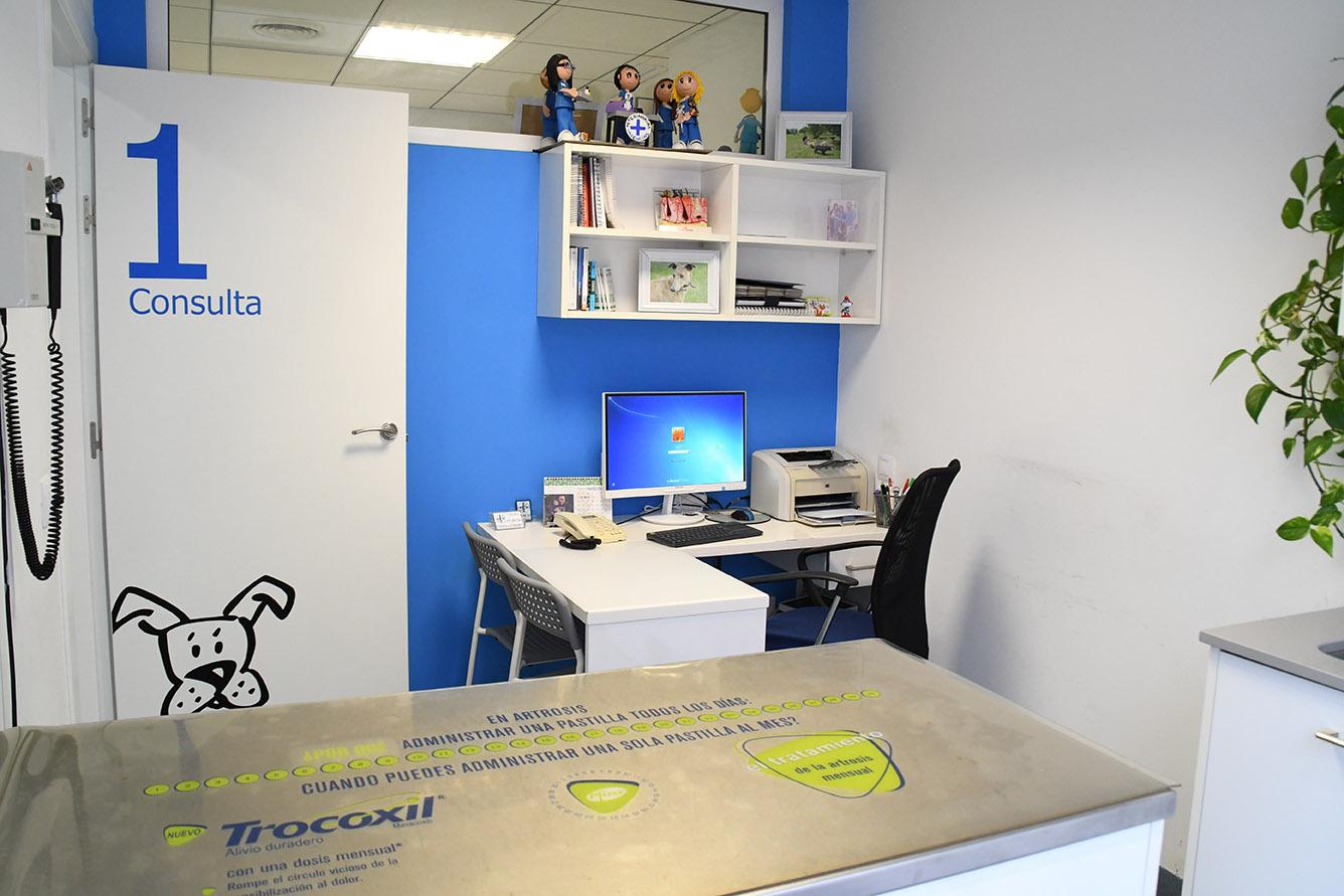 Interior consulta